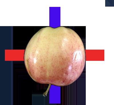 Apple 401