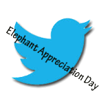 Elephant Appreciation Day 2014 in Tweets